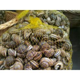 Maille d'escargots
