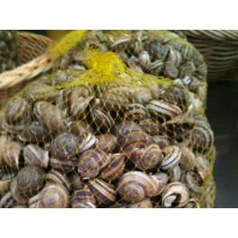 Snails net